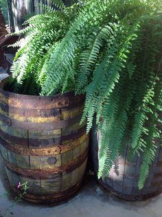 Old barrells