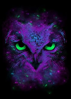 Hand-crafted metal posters designed by talented artists. We plant 10 trees for each purchased Displate. Owl Wallpaper, Animal Wallpaper, Pattern Wallpaper, Owl Eye Tattoo, Buho Tattoo, Airbrush, Owl Eyes, Owl Pictures, Beautiful Owl