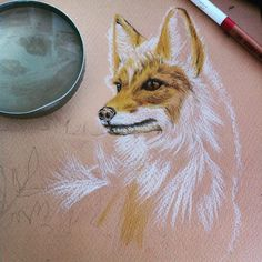 Red #fox on progress <3 #nuttyenvyart #colorpencil #drawing #artteacher
