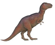 Tyrannosaurs Rex Dinosaur Wall Sticker Decoration makes it easy to transform your walls into prehistoric times! Shop www.DinosaurToysSuperstore.com today!