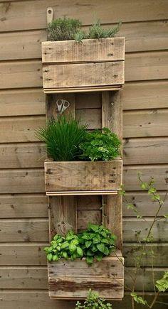 Jardín vertical hecho con tarimas de madera