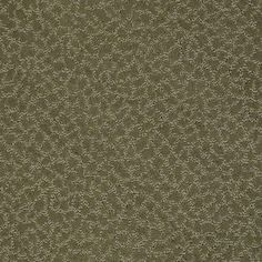 Color: 00303 Edford Meadow CCS20 Capellini - Shaw Caress Carpet Georgia Carpet Industries