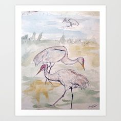 Heron Sketch #1 Art Print by Yousef Balat @ Hoop Snake Graphics LLC - $17.00