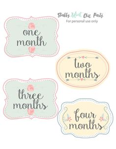 PRINTABLE Baby Monthly Stickers.Floral Baby Stickers. Baby Girl Milestone Stickers.First Year Belly Stickers.INSTANT DOWNLOAD. - pinned by pin4etsy.com