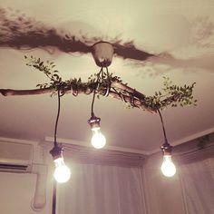 の流木ライト/ラッカースプレー/東急ハンズの流木/流木リメイク品/流木照明…などについてのインテリア実例を紹介。「祝!初DIY。RCを参考にリビングの照明を作成しました」(この写真は 2015-12-21 19:03:31 に共有されました)