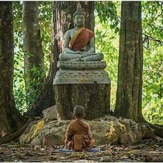 """""""He who is rich in the knowledge of the Self does not covet external power or possession.""""     ~  Paramananda, The Upanishads   <3 lis"""