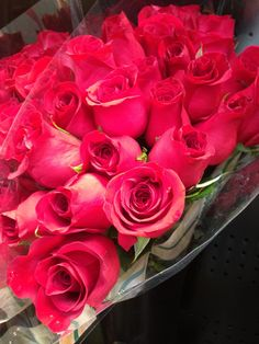 Deep Pink #Roses at #Louisville Costco - 16.99 for TWO dozen. Gorgeous!