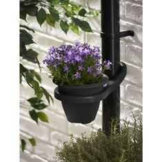 This drainpipe plant pot holder clips onto your drainpipe, and uses an inbuilt counterbalance to stay put.