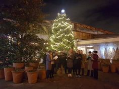 The carol singers at Christmas at Kew 2016, sang beautifully, as the singers welcomed visitors to the Royal Botanic Gardens, Kew.