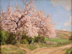 Georg Macco (1863-1933) Kirschblüte