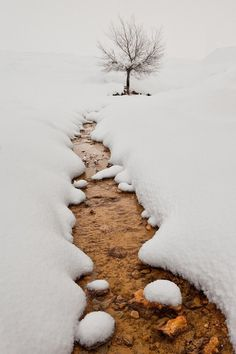 "Snow Creek, Murcia, Spain photo via olga ~ ""Even the storm of breath ~ Is white, ~ This winter morn. I Love Snow, I Love Winter, Winter Snow, Winter Time, Winter Road, Snow Scenes, Winter Scenes, Magic Places, Welcome Spring"