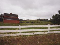 Woodside California United States - #northerncalifornia #california #norcal#beautiful #westcoast #summer by malaykato