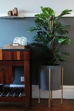 This concrete planter and split philo tree sure hits the spot! Could be one of our favourite pieces 😍 #rtcfloral #splitphilo #concretepot #planter #scandidesign #metallicpot