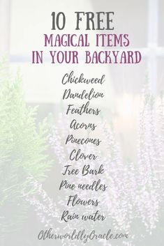 10 FREE Backyard herbs and objects to use in YOUR magick!