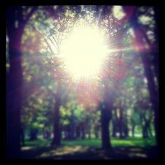 The Instacanvas gallery for obucek. Buy Instagram art from obucek and photography.