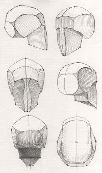 anatomy Drawing Tips mountain drawing Anatomy Sketches, Anatomy Drawing, Anatomy Art, Drawing Sketches, Art Drawings, Drawing Tips, Drawing Drawing, Drawing Lessons, Basic Drawing