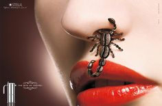 Ad out of Italy for Stella coffee products. Coffee Bean Scorpion IS IN HER NOSE
