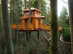 Cool tree house with a deck & a bridge. Treehouse Living, Woodland House, Cool Tree Houses, Tree House Designs, Cabana, Tree Tops, In The Tree, House In The Woods, Play Houses