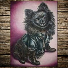 Another custom portrait order done. This spunky little dog ROCKED that jacket! Order your custom drawing @ artistrybylisamarie.etsy.com