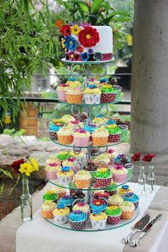 Colourful cupcakes and cake