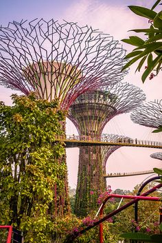 "Gotta get to Singapore! The ""Hanging bridge"" at Gardens by the Bay, in Singapore (Photo by: Jirka Matousek) Places Around The World, Oh The Places You'll Go, Places To Travel, Places To Visit, Around The Worlds, Singapore Photos, Singapore Travel, Singapore Singapore, Gardens By The Bay"