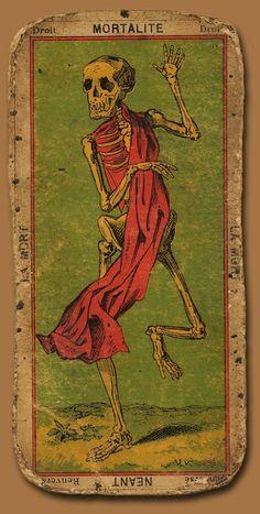 La mort - the Death Tarot archtype Xiii Tarot, Vintage Tarot Cards, La Danse Macabre, Art Et Illustration, Illustrations, Vanitas, Art Graphique, Memento Mori, Tarot Decks
