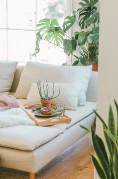 Boho Vibes with Lots of Houseplants, houseplants, boho decor, bohemian decor, boho vibes, plant blog, cocktail blog