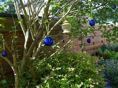 Blauw in de boom.