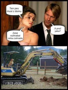 Funny Jokes, Haha, Humor, Memes, Husky Jokes, Ha Ha, Humour, Meme, Funny Photos