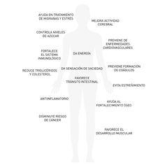 Nutre tu cuerpo: chía - Beneficios ©blamag