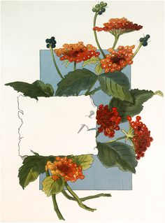 Vintage Orange Flowers Label Orange Lantana