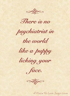 anim, puppi lick, therapy dogs, pets, doggi, frown upsid, dog quotes, pet pin, lola puppi