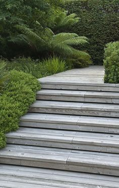 Wooden steps with shadow gap