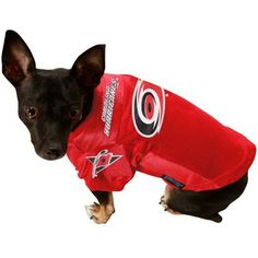 Carolina Hurricanes Pet Jersey... I need this for my dog!!! #CanesGifts