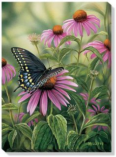 Art | Wrapped Canvas Art Black Swallowtail Butterfly by R. Millette