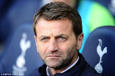 Hands off: Tim Sherwood has been upset by reports linking other managers with the Tottenha...