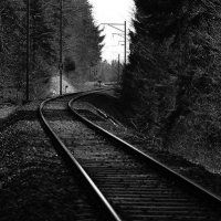 Zürich / Die Schweiz / Fotos | Nies.ch Railroad Tracks, Switzerland, Pictures, Light Pollution, Nature Reserve, Autumn Leaves, Mists, Train Tracks