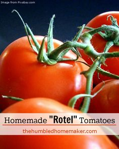 """Homemade """"Rotel"""" Tomatoes - The Humbled Homemaker"""