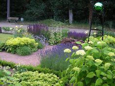 Billedresultat for annabelle hortensia Blue Garden, Colorful Garden, Dream Garden, Amazing Gardens, Beautiful Gardens, Fenced Vegetable Garden, Vegetable Garden For Beginners, Border Plants, Woodland Garden