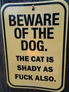 Community Post: Beware Of The Dog...The Cat Is Shady As F&*K Also