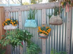 Recycled Container Gardens...old leather hand bags..
