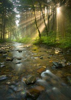 Sun Rays, Rocky River, Oregon