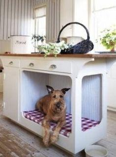 Loucas por cães: ideias incríveis para os nossos melhores amigos!