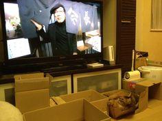 I like TV !