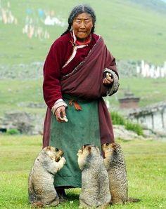 Тарбаган — монгольский сурок.