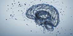 FiD: Η ηλεκτρονική εφαρμογή που βάζει την ψυχική υγεία σε καθημερινή προτεραιότητα