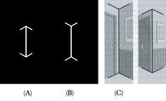 Muller Lyer Illusion Comparison 3