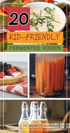 20 Kid Friendly Fermented Foods | www.homemademommy.net