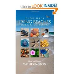 73 best pineapple press books images on pinterest pine apple floridas living beaches a guide for the curious beachcomber comprehensive accounts of over 800 fandeluxe Choice Image