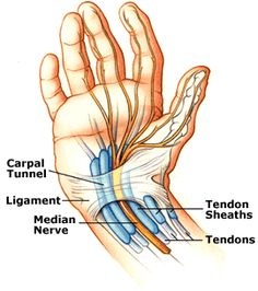 Carpal Tunnel:  http://www.performchiro.com/your-symptoms/